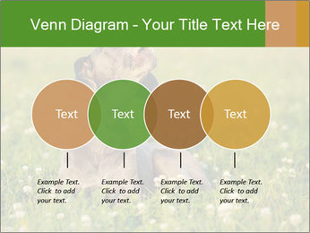 0000076354 PowerPoint Templates - Slide 32