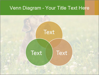 0000076354 PowerPoint Templates - Slide 33