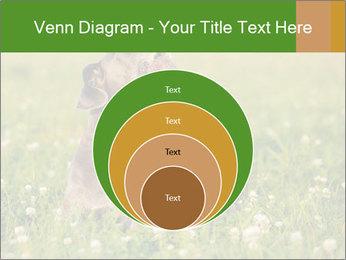 0000076354 PowerPoint Templates - Slide 34