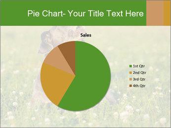 0000076354 PowerPoint Templates - Slide 36