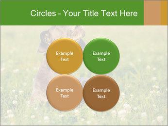 0000076354 PowerPoint Templates - Slide 38