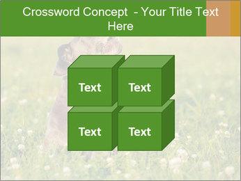 0000076354 PowerPoint Templates - Slide 39