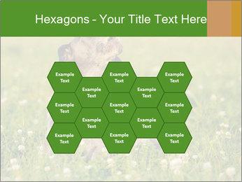0000076354 PowerPoint Templates - Slide 44