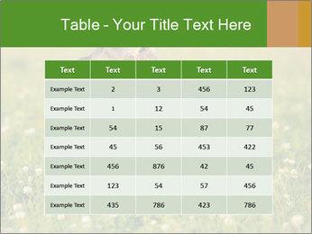 0000076354 PowerPoint Templates - Slide 55