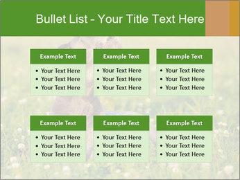 0000076354 PowerPoint Templates - Slide 56