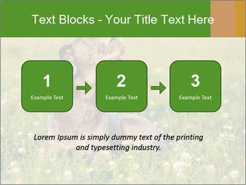 0000076354 PowerPoint Templates - Slide 71