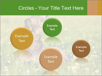 0000076354 PowerPoint Templates - Slide 77