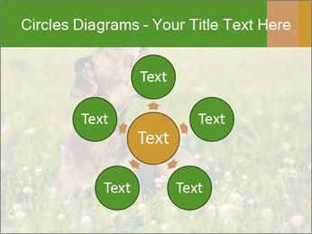 0000076354 PowerPoint Templates - Slide 78