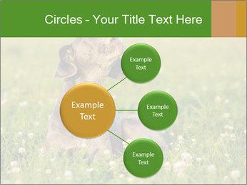 0000076354 PowerPoint Templates - Slide 79