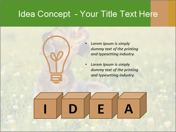 0000076354 PowerPoint Templates - Slide 80