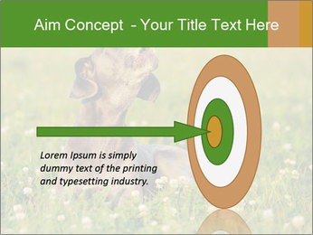 0000076354 PowerPoint Templates - Slide 83