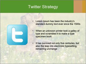0000076354 PowerPoint Templates - Slide 9