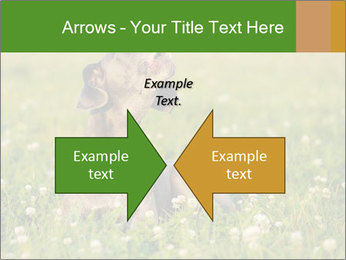 0000076354 PowerPoint Templates - Slide 90