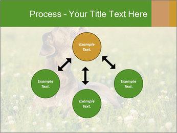 0000076354 PowerPoint Templates - Slide 91