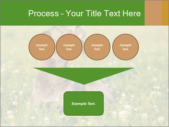 0000076354 PowerPoint Templates - Slide 93