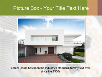 0000076355 PowerPoint Template - Slide 15