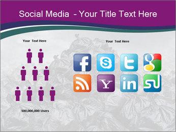 0000076372 PowerPoint Templates - Slide 5