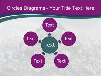 0000076372 PowerPoint Templates - Slide 78