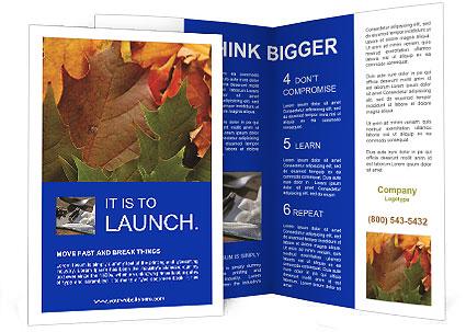 0000076380 Brochure Template