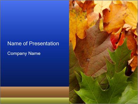 0000076380 PowerPoint Templates