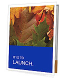 0000076380 Presentation Folder