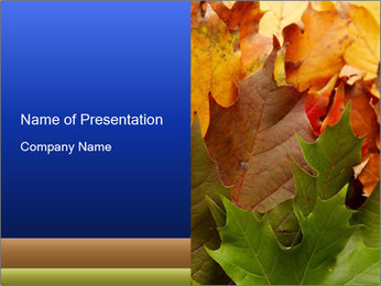 0000076380 PowerPoint Template - Slide 1