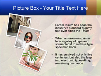 0000076380 PowerPoint Template - Slide 17