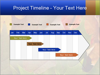 0000076380 PowerPoint Template - Slide 25