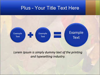 0000076380 PowerPoint Template - Slide 75
