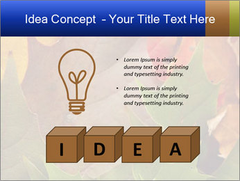 0000076380 PowerPoint Template - Slide 80