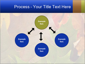 0000076380 PowerPoint Template - Slide 91