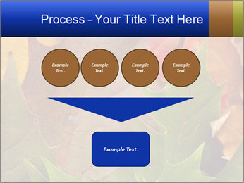0000076380 PowerPoint Template - Slide 93