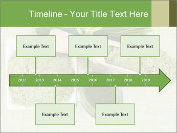 0000076387 PowerPoint Template - Slide 28