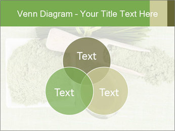0000076387 PowerPoint Template - Slide 33