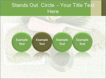 0000076387 PowerPoint Templates - Slide 76