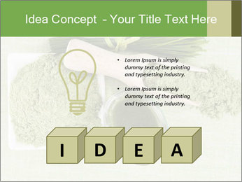 0000076387 PowerPoint Template - Slide 80
