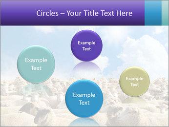 0000076393 PowerPoint Templates - Slide 77