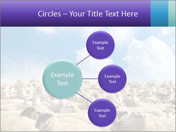 0000076393 PowerPoint Templates - Slide 79
