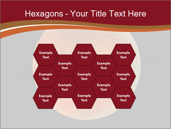 0000076415 PowerPoint Templates - Slide 44