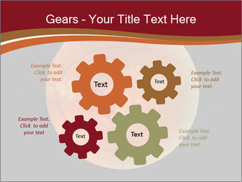 0000076415 PowerPoint Templates - Slide 47