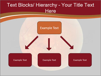 0000076415 PowerPoint Template - Slide 69