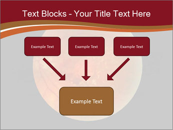 0000076415 PowerPoint Template - Slide 70
