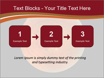 0000076415 PowerPoint Template - Slide 71