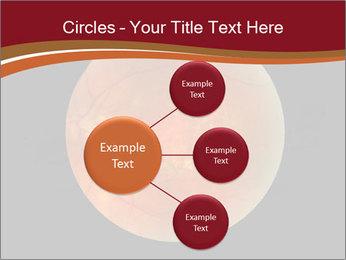 0000076415 PowerPoint Template - Slide 79