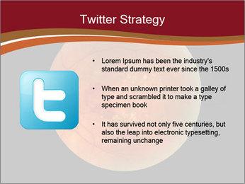 0000076415 PowerPoint Template - Slide 9