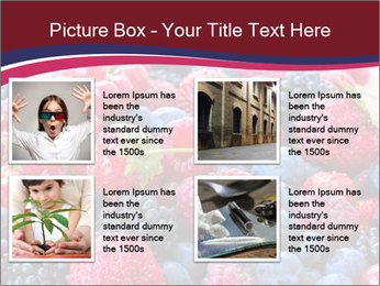 0000076432 PowerPoint Template - Slide 14