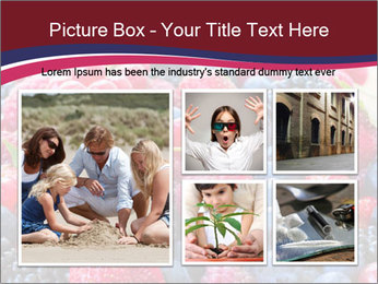 0000076432 PowerPoint Template - Slide 19