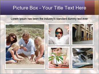 0000076439 PowerPoint Template - Slide 19
