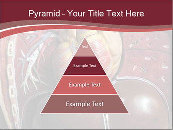 0000076441 PowerPoint Templates - Slide 30