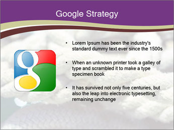0000076445 PowerPoint Template - Slide 10